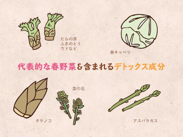 代表的な春野菜&含まれるデトックス成分