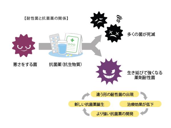 耐性菌と抗菌薬の関係