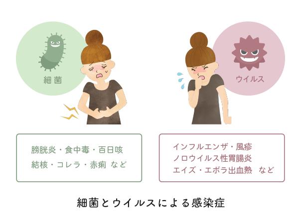 細菌とウィルスによる感染症