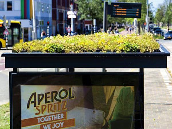 バス停の屋根を緑化